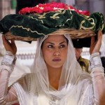 Veena Malik Model and Actress Hot Pictures (3)