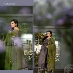 Woolen Shawl Collection Women Style by Lala Textiles 2014-2015 (5)