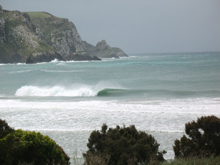 nz dream wave