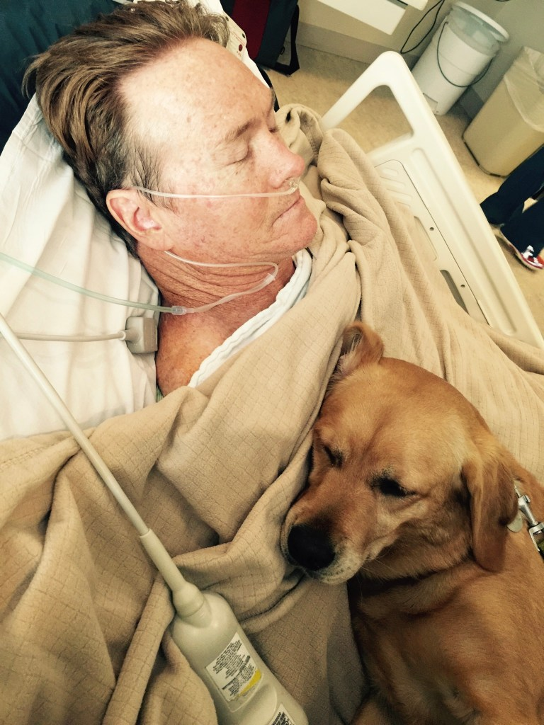 Service dog with me in ICU