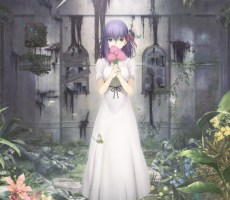 Fate_staynight-Heaven's_Feel-movie_version