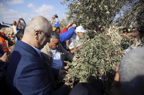 الحمد الله: دعم مزارعي وفلاحي فلسطين مسؤولية وطنية