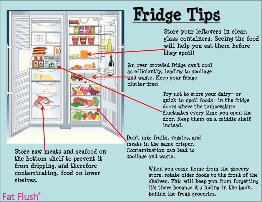 Fridge Tips How To Keep Your Food Fresh Fat Flush