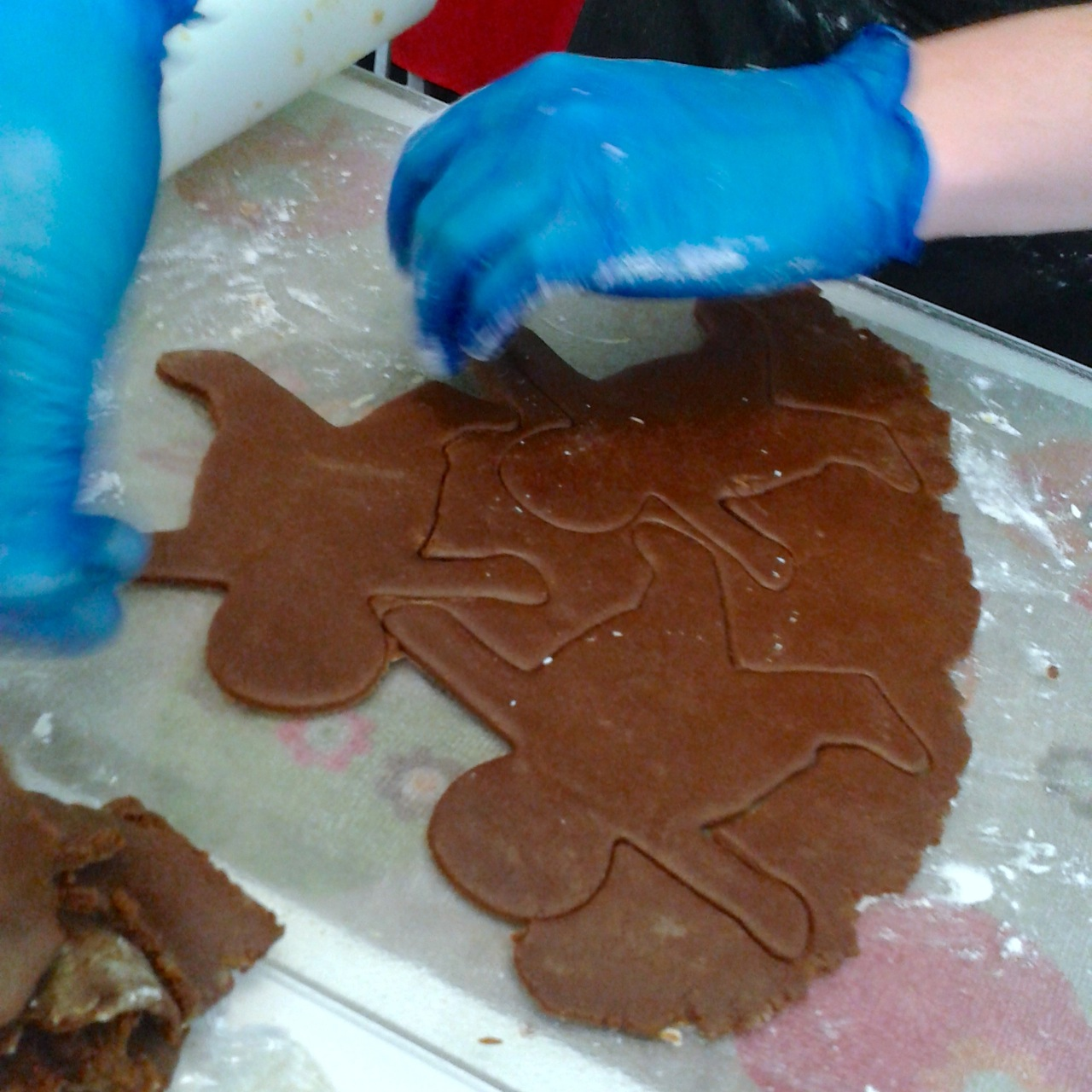 http://i0.wp.com/fatgayvegan.com/wp-content/uploads/2014/12/gingerbread.jpg?fit=1280%2C1280