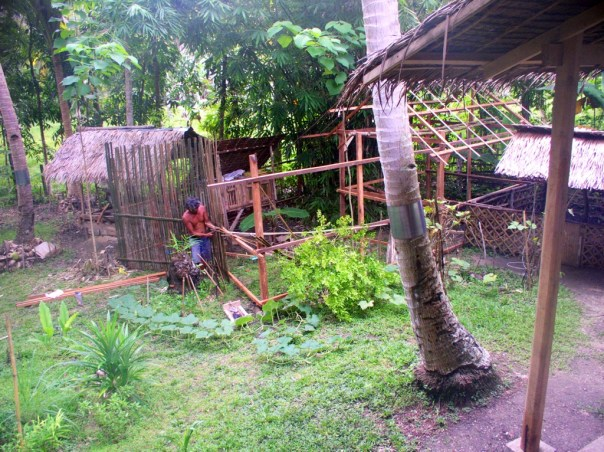 In 2011, we asked Bebe to build this chicken house/run in the garden, something that we would stop using in 2014 and demolish in 2015.