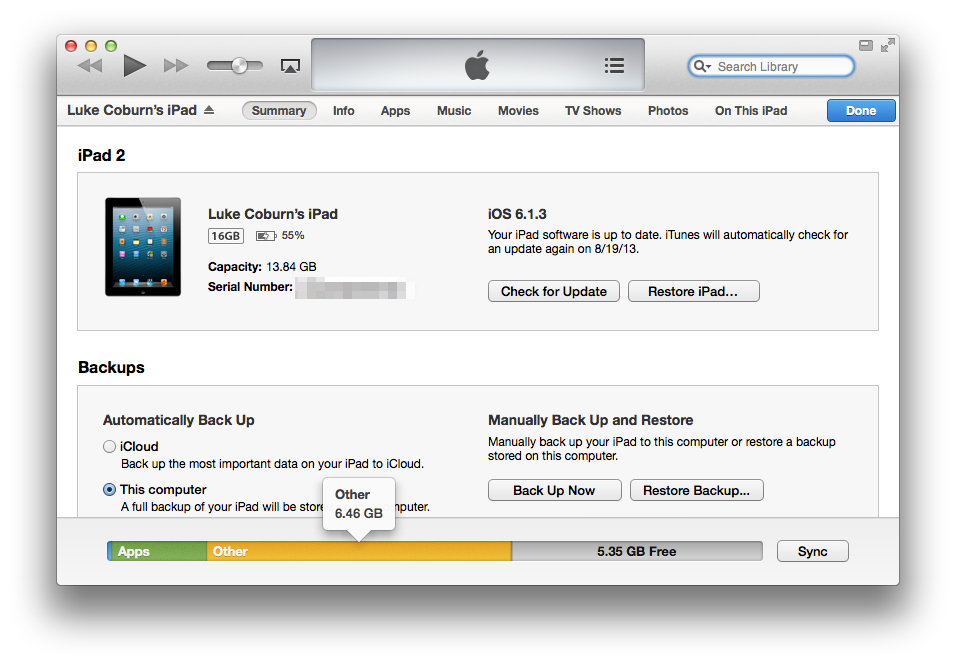 Other iPad Storage Space