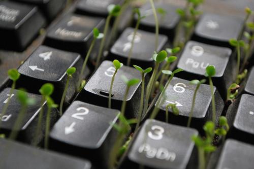 Lovely Wallpaper Girl And Boy Art Creative Funny Green Green In Keys Keyboard