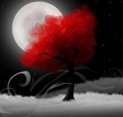 Cute Crazy Girl Wallpaper Black Gothic Moon Red Tree White Image 36690 On