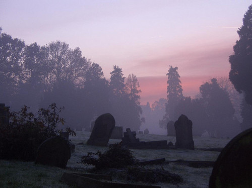 Girl Halloween Wallpaper Beautiful Cemetery Fog Gothic Graves Graveyard