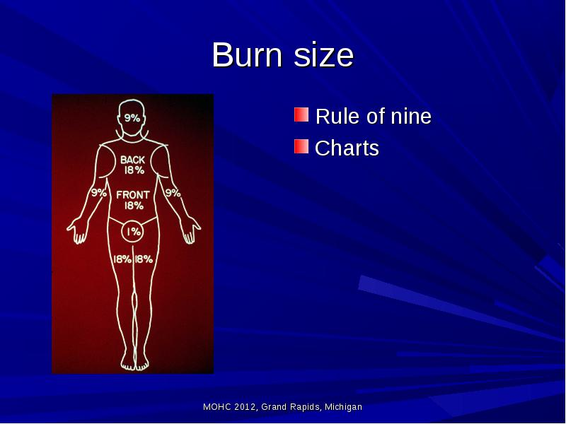 New Burn Degree Chart burn scald skin the skin is the largest no