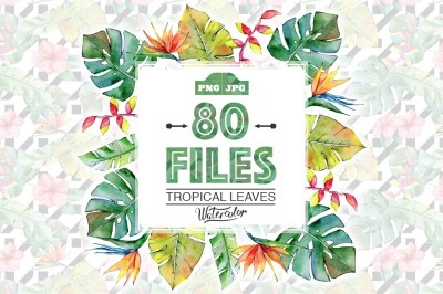 Tropical leaves PNG watercolor set