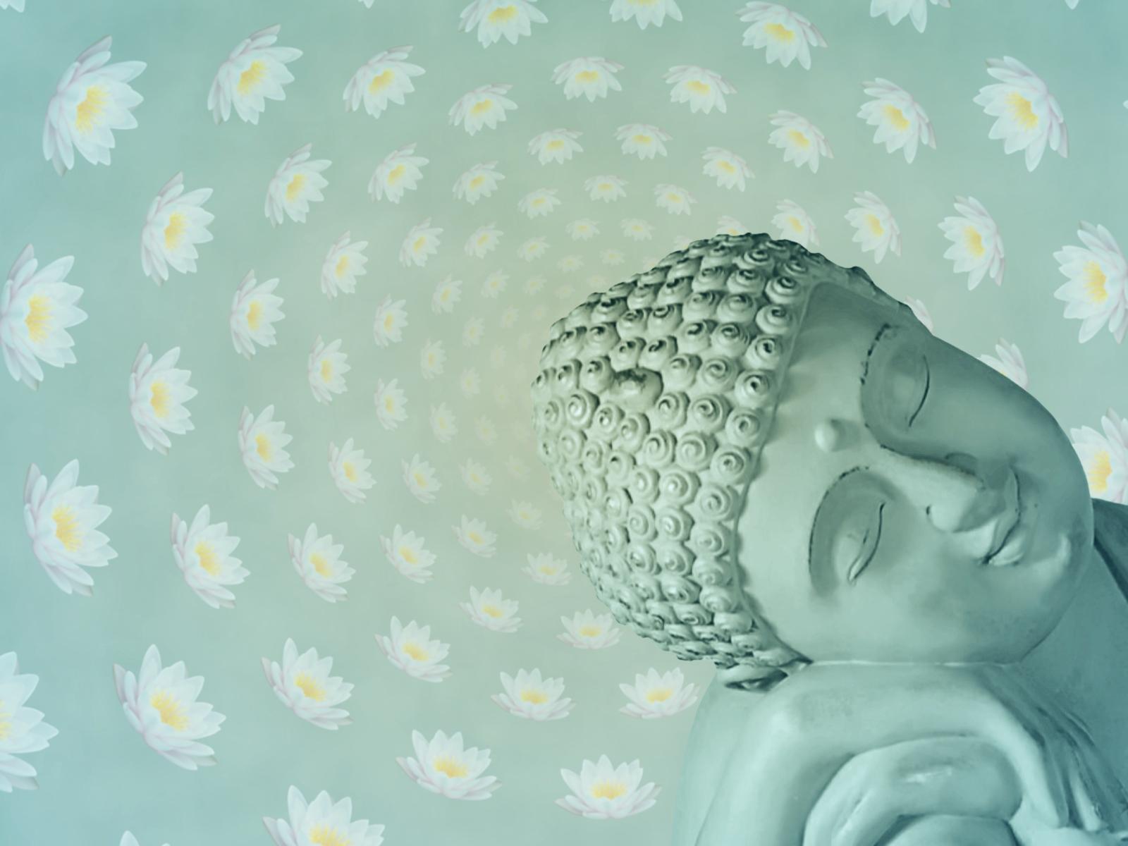 Pinterest Desktop Wallpaper Lotus Quote Lotus Flower Buddha Quotes Quotesgram