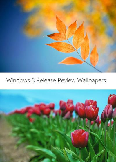 Windows 8 Release Preview Wallpapers by Misaki2009 on DeviantArt