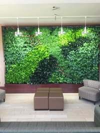 Green Living Walls & Plant Wall Maintenance - Pennsylvania ...