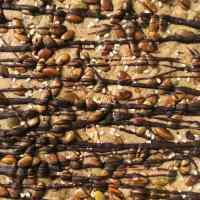 Dark Chocolate Pumpkin Seed Toffee Bark