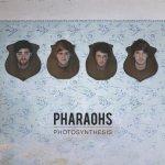 phroahs