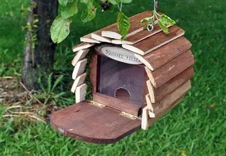 4 Unbelievable Squirrel House Designs