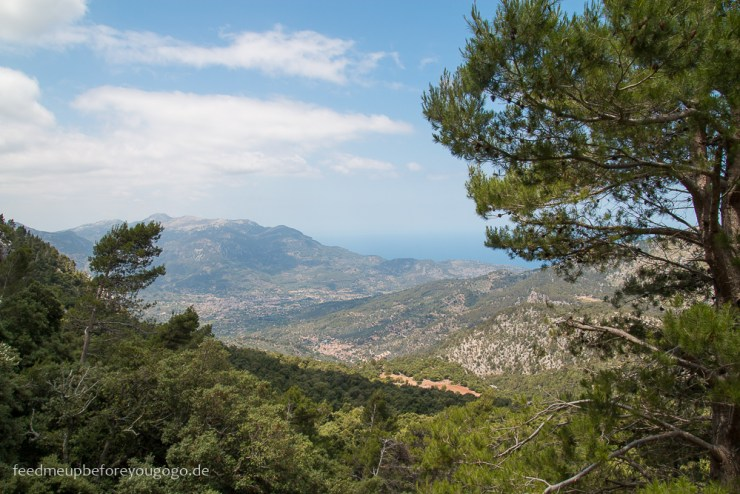 mallorca-food-travel-guide-soller-port-de-soller-feed-me-up-before-you-go-go-35