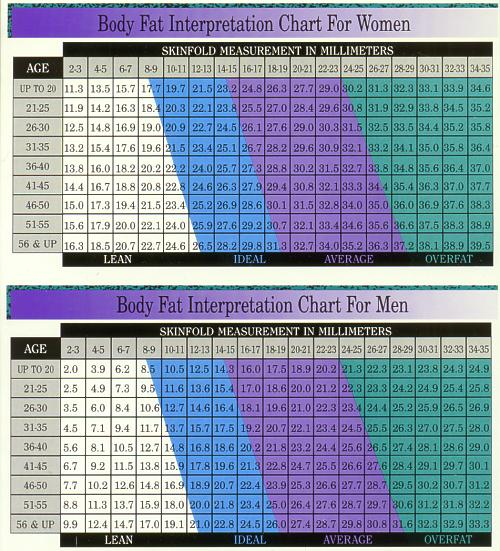 Measuring your own body fat with cheap skinfold calipers - Fellrnr - body fat chart