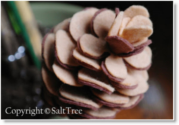 pine cone Harry