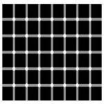 ¿Ves los puntos en la cuadrícula?