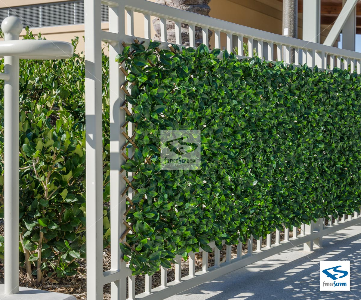 Bunnings Fake Turf Artificial Ficus Expandable Trellis Privacy Fence