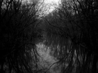 Odbrana i poslednji dani (6) – Vode i zlobe nikad nestati neće [Tema: Pekić]