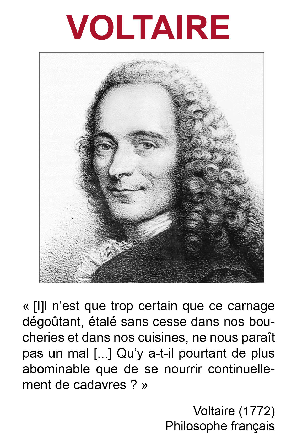 voltaire essays voltaire candide essays essays candide and the enlightenment