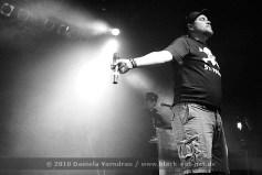 NEUWERK-2010-0260