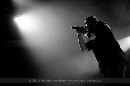 Chrom beim Electronic Dance Art Festival am 29.12.2014 in der Batschkapp Frankfurt / Main