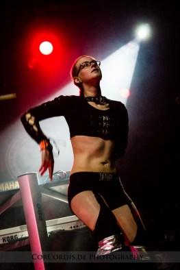 Electronic Dance Art Festival - Batschkapp Frankfurt - Dezember 2014