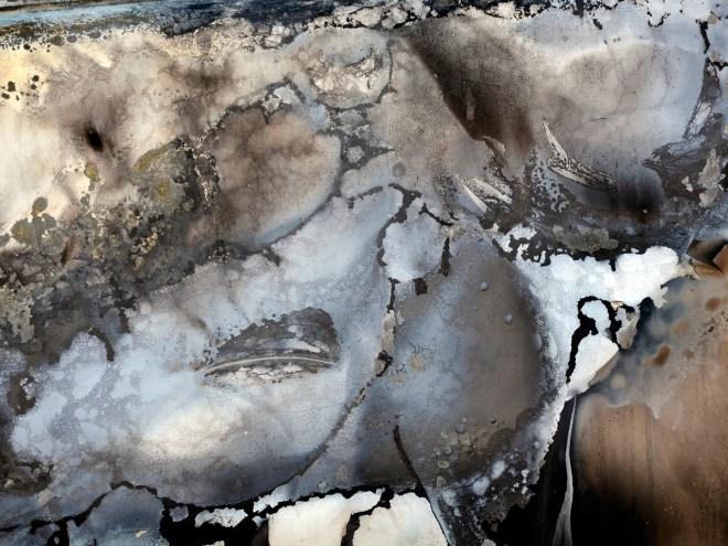 COP n+1 L'HUMANITÉ - Photo contrecollé sur dibond (40x60cm) 2017 p