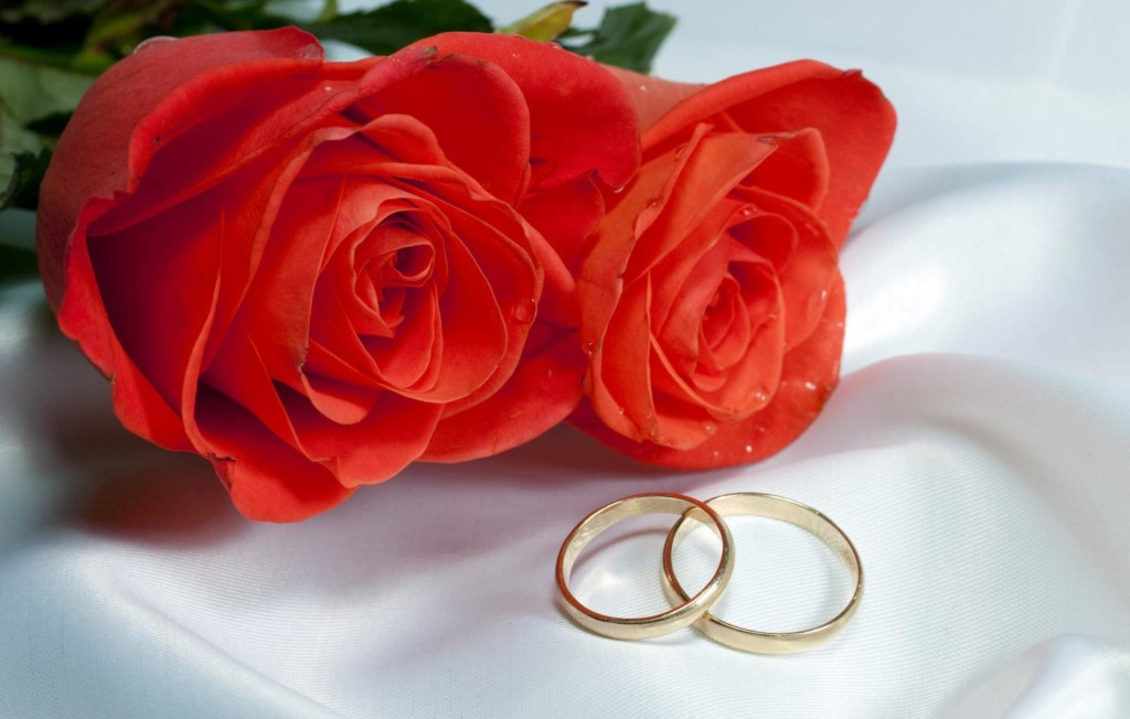 Ring Ceremony Hd Wallpaper Rose Day Pics Hd Images Status Amp Funny Roses Are Red