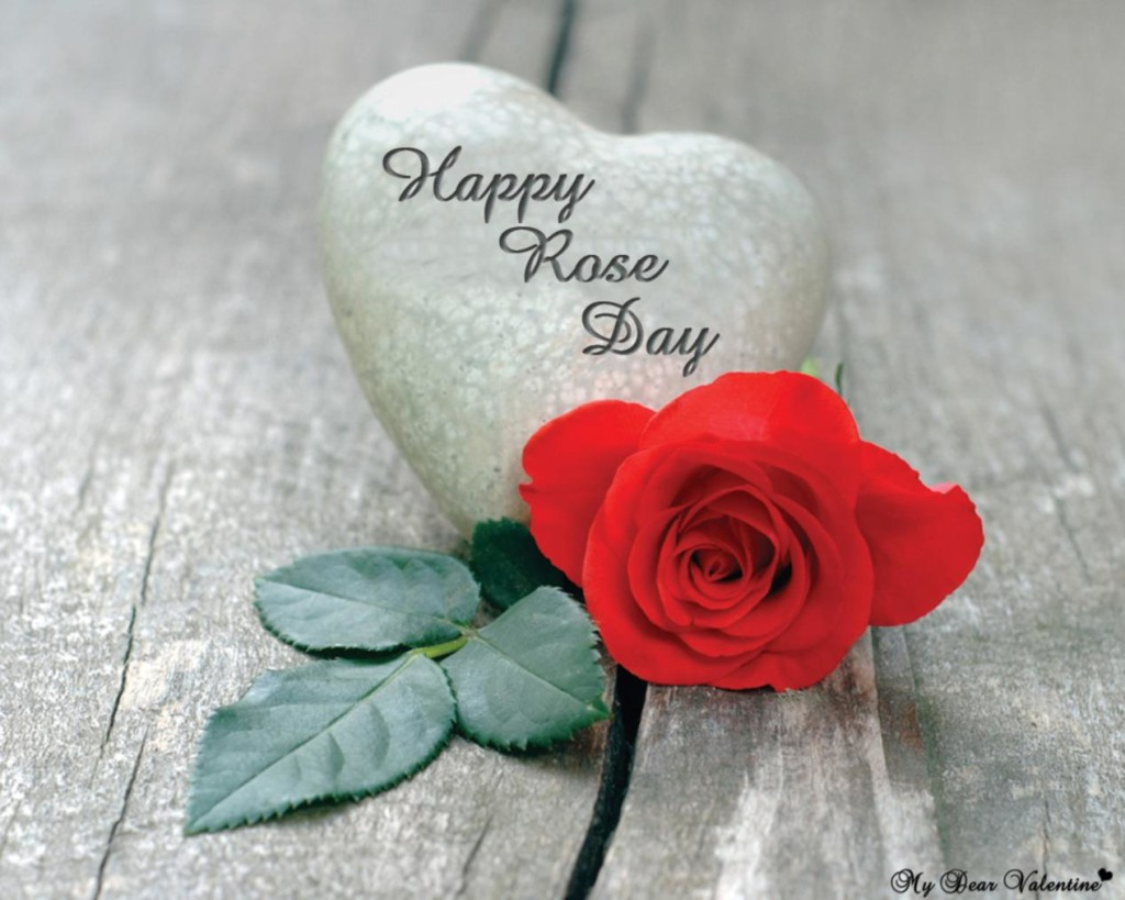 Free Cute Wallpapers With Quotes Rose Day Pics Hd Images Status Amp Funny Roses Are Red