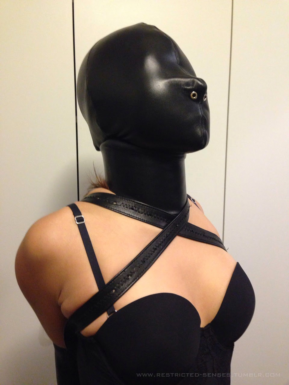 posture collar bondage and chastity