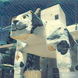 big-cat_3