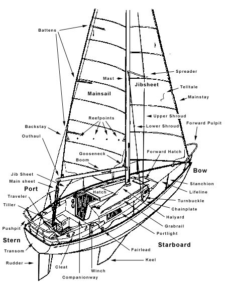 yacht polar diagrams