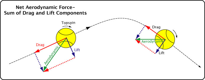The Physics of Tennis Ball Spin In Flight