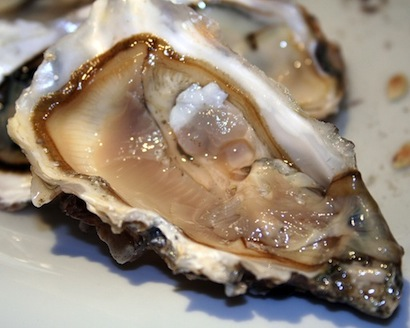 Oyster a