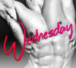 Blog Tour Stop & Review: Wednesday by Kendall Ryan