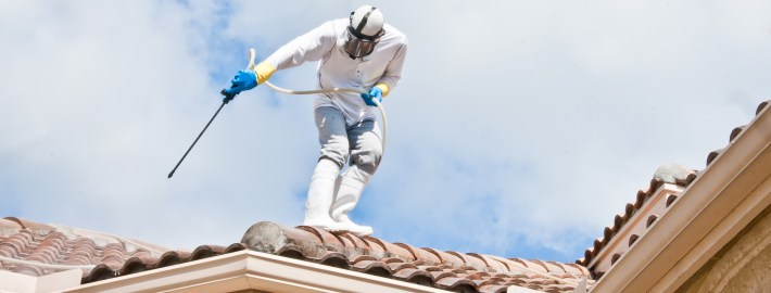 Hiring a Roof Cleaning Company? Avoid These Mistakes!