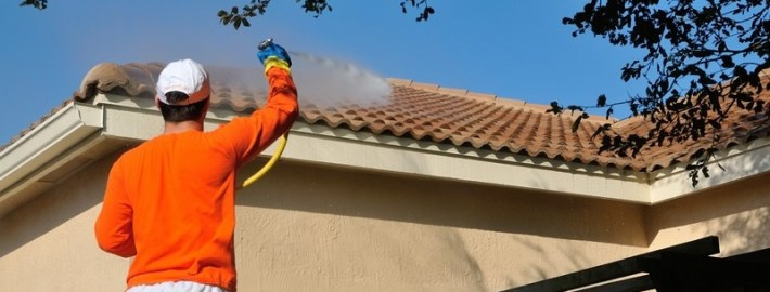 Clean Your Roof! The Dangers of Roof Mold and Algae