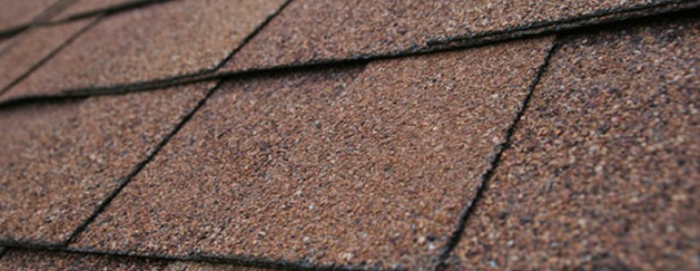 Need to Get Rid of Black Stains on Your Roof? We Can Help!