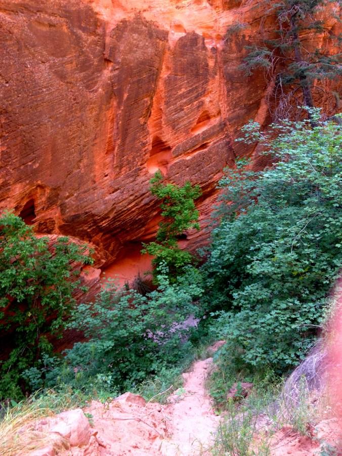 Red Cliffs of Zion
