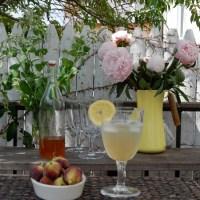 Kahoo va Sharbat 'e Sekanjabin | Persian honey vinegar mint cooler. It's also a lettuce dip! Avicenna's recipe!