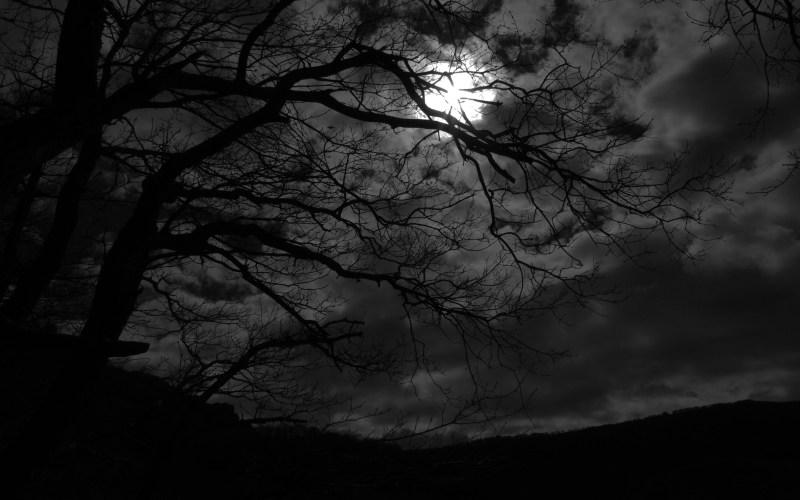 dark_night_by_rad_wulf-d5xx0pd