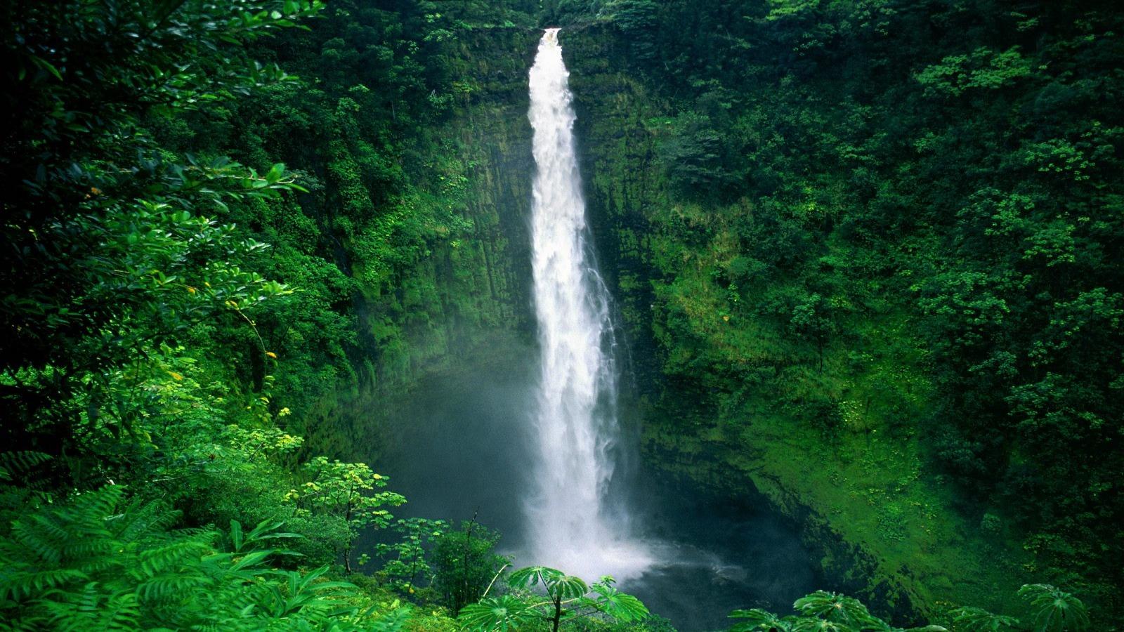 Falls Wallpaper Download アカカ滝壁紙滝自然 自然 壁紙 無料でダウンロード