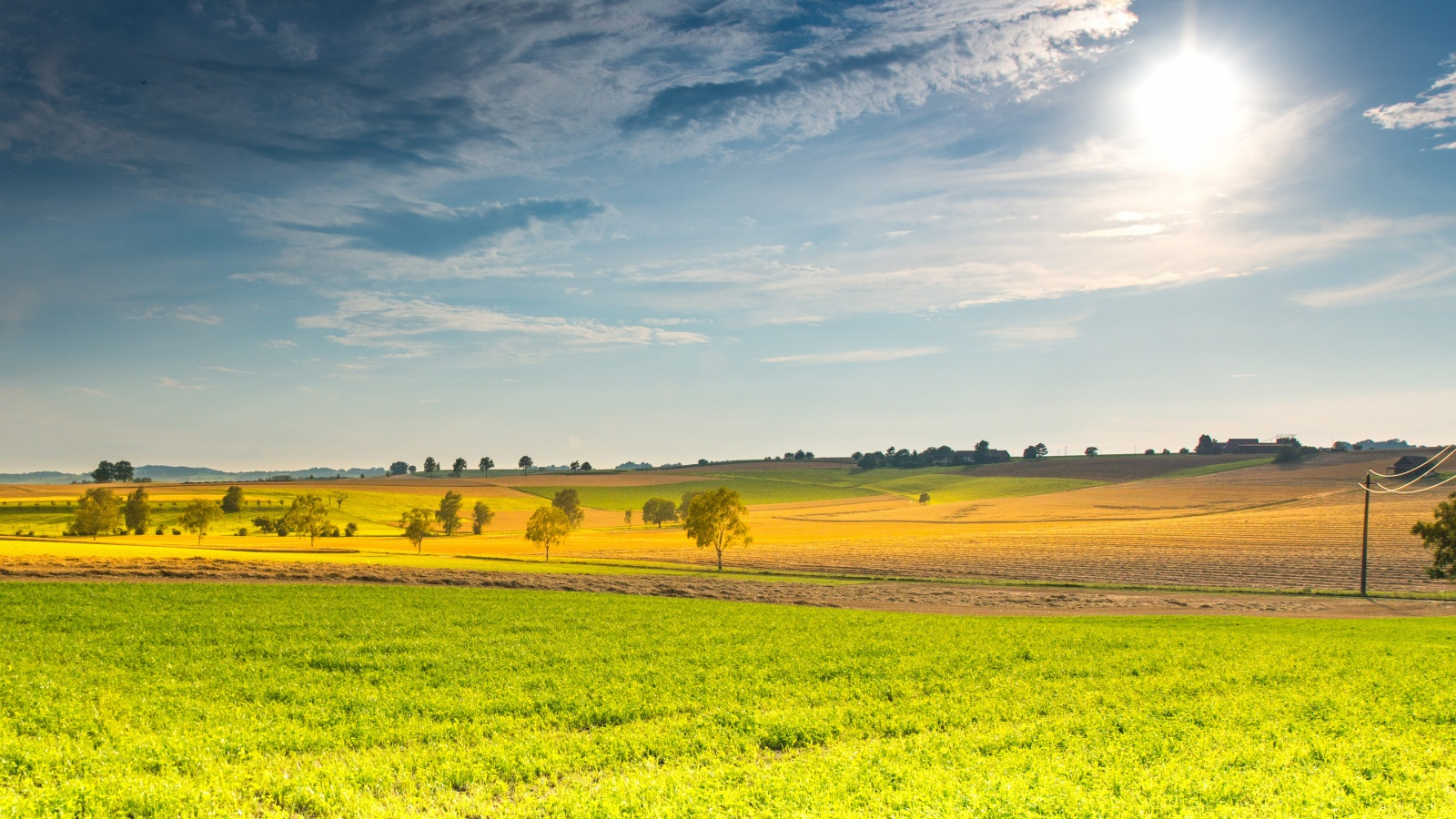 Animated Fall Wallpaper Spring Sunny Landscape Wallpapers In Jpg Format For Free