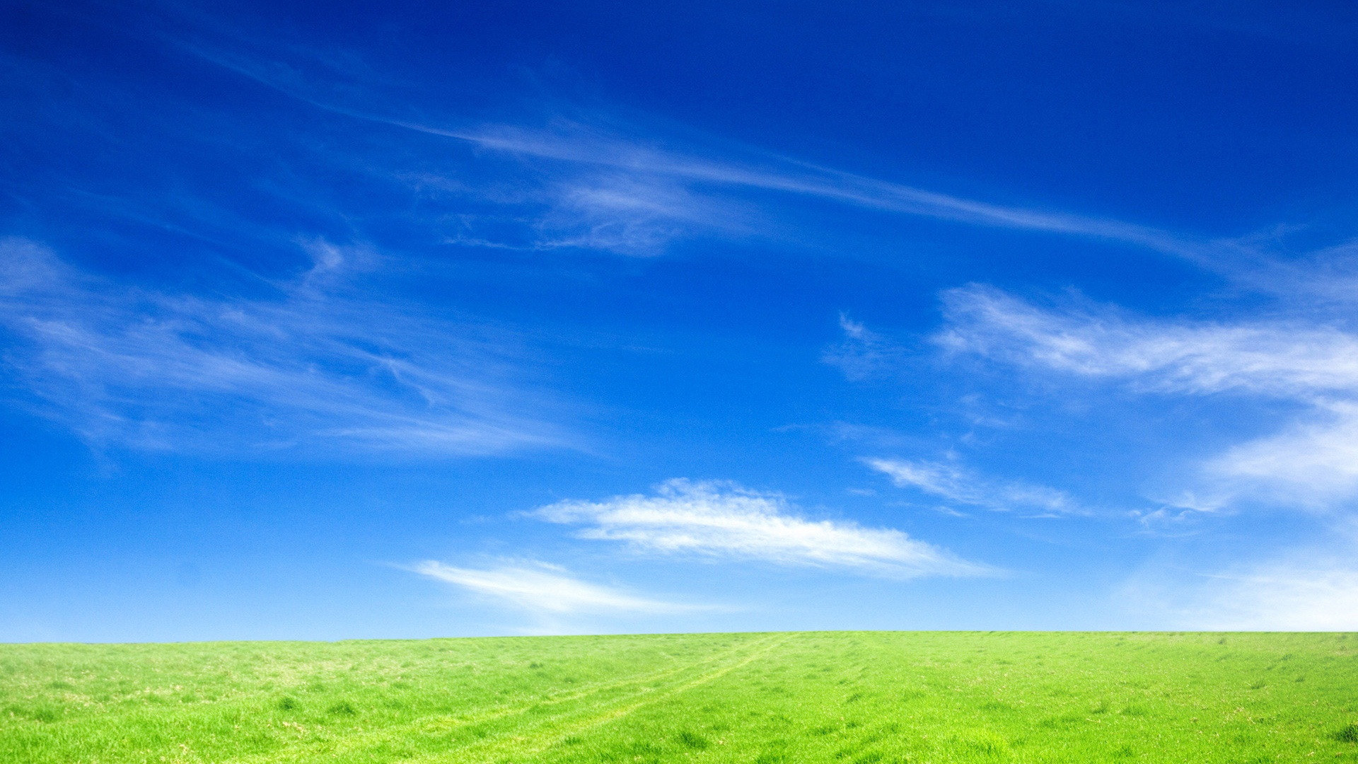 Wallpaper Download Alone Girl Blue Sky And Green Grass Wallpapers In Jpg Format For Free