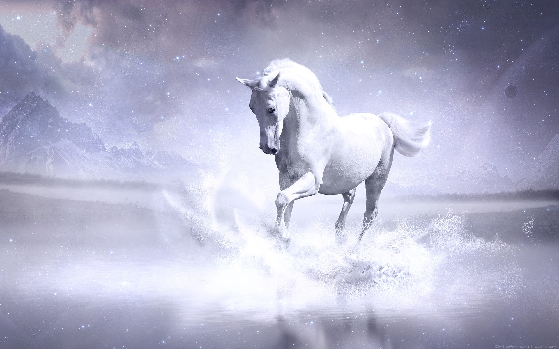 Running Horse 3d Wallpaper White Horse Wallpapers In Jpg Format For Free Download